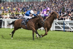 BACCHUS HOLDS ONTO WIN WOKINGHAM STAKES FROM DREAMFIELD (7).ASCOT 23-6-18.Photo © George Selwyn +44 (0)7967 030722116 Wellington Parade Kent UK CT14 8AF.