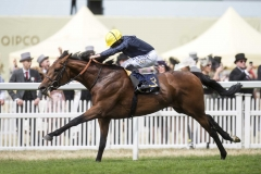 CRYSTAL OCEAN AND RYAN MOORE SCORE COMFORTABLE WIN IN THE HARDWICKE STAKES.ASCOT 23-6-18.Photo © George Selwyn +44 (0)7967 030722116 Wellington Parade Kent UK CT14 8AF.