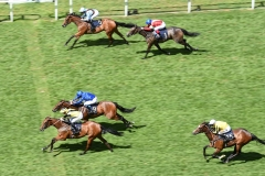 MAIN EDITION WINNING THE ALBANY STAKES.ASCOT 23-6-18.©George Selwyn  07967 030722 email: george@georgeselwyn.co.uk Vat no:3308110 05
