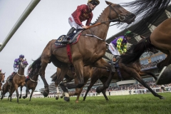 PALLASATOR PASSING THE STANDS ON FIRST CIRCUIT ON WAY TO WINNING THE QUEEN ALEXANDRA STAKES FROM, RENNETI AND COUNT OCTAVE (LEFT).ASCOT 23-6-18.Photo © George Selwyn +44 (0)7967 030722116 Wellington Parade Kent UK CT14 8AF.
